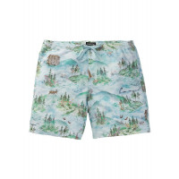 Burton Men's Creekside Shorts Sterling Pond